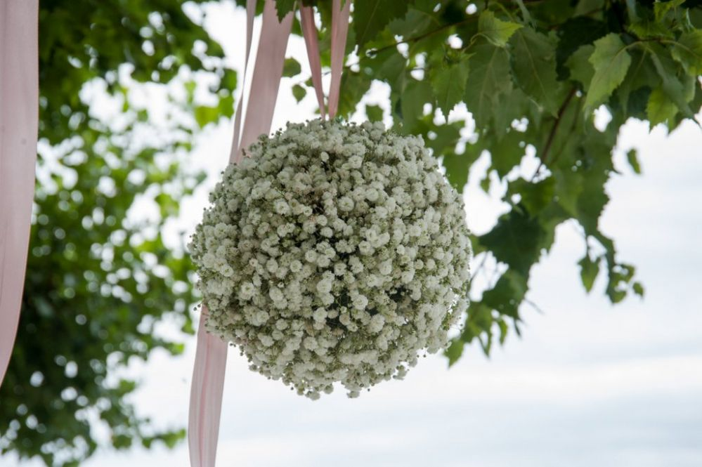 Gypsophila ball
